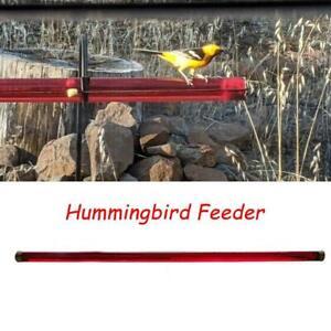 Anna's Best Hummingbird Feeder with Hole Feeding Pipes Birds Easy TH