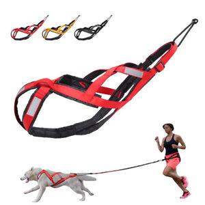Dog Sledding Harness Reflective Large Dog Weight Pulling Harness Fleece Padded