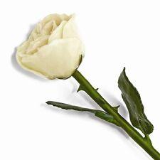 "Lacquered Rose White Real Long Stemmed Rose 12"" Gift Box Natural Forever Rose"