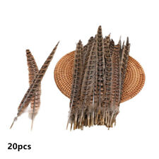 20 Pack 25-30cm Natural Pheasant Tail Feathers Long DIY Craft Party 10-12 Inch