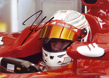 Kamui Kobayashi Signed 5X7 Inches 2013 Ferrari F1 Photo