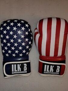 NIP The Carbon Strike American Flag USA 16 oz. Kickboxing Gloves Ilovekickboxing