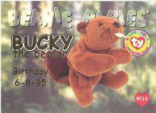 Ty Beanie Babies Bboc Card - Series 1 Birthday (Gold) - Bucky the Beaver - Nm/M