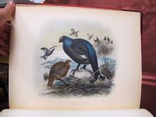 1892 GAME BIRDS SHOOTING SKETCHES Illustrated FOLIO Color Plates Hunting VTG