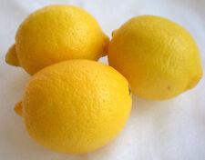 Lemon Verbena Glycerin Bath Soap With Added Vitamin E (20 Bars Included)