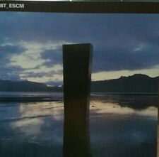 "BT ""ESCM"" *Perfecto-3984-20065-2/feat.""Flaming June""with Paul van Dyk,""Remember"""