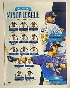 2018 Tampa Bay Rays Minor League 12x Signed 18x24 Poster w Wander Franco CAS COA