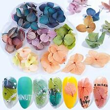 Dried Flowers Nail Art Supplies - 3D Nail Art for Acrylic Nails Dry Flowers f...