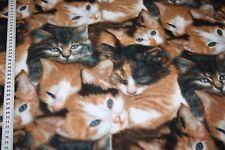 Fleece Stoff Katzen braun  1m