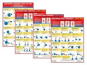 Exercise Poster Gym Ball Training Swiss Ball Fitness Charts