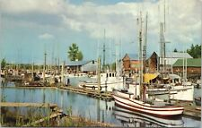 Fishing Fleet Fraser River BC British Columbia Boats Vintage Postcard D61