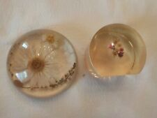 Two Vintage Dried Flower Paper Weights