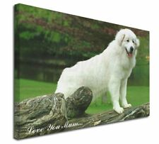 More details for pyrenean mountain dog 'love you mum' x-large 30