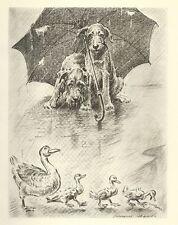 """Airedale Terrier Ducks - Dog Art Print - M. Dennis """"N"""""""