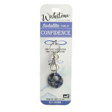 Wishstone Collection Beautiful Sodalite Self Esteem and Intuition Key Charm