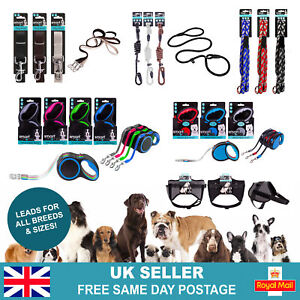 Durable Strong Dog Leads | Retractable Slip Rope Training Puppy Walking Leash UK