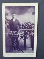 ±1908 Postcard ROCKHAMPTON Franco British Exhibition FRUITS GROWN AUSTRALIA