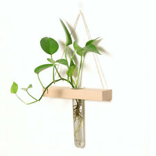 Wall Hanging Clear Glass Test Tube Flower Vase With Wooden Stand Home Decor