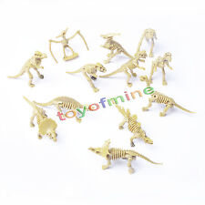 12 Sortierte Kunststoff Dinosaurier Fossil Skeleton Dino Fakten Kinder Spielzeug