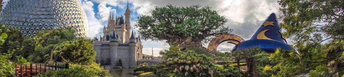 Authentic Disney-N-Things