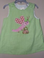 Potato Saks 18M 2T Dragonfly Dress Green Gingham Bugs Pearls Polka Dots A Line