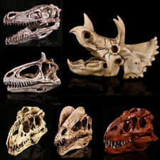 Triceratops Tyrannosaur Rex Skull Model Decoration Dinosaur Figure Toy Collector