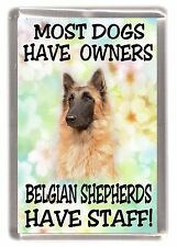 """Belgian Shepherd Dog(Terv) Fridge Magnet """"Most Dogs Have Owners ... Have Staff"""""""