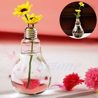 Clear Flower Vase Light Bulb Stand Glass Hydroponic Pot Container Decor