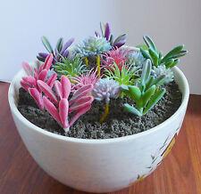 Set of 16 Artificial Miniature Succulents Stone Lotus Flocking Grass
