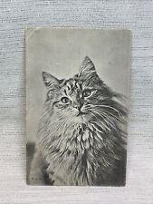 Vintage Postcard Unposted Carte Postale Black And White Cat European