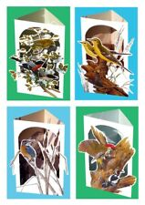 3D greeting card gift set 4X Birds, Greenfinch, Woodpecker, Kingfisher, Wagtail
