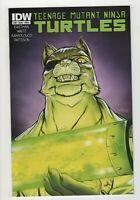 Teenage Mutant Ninja Turtles # 38 A (Sep 2014, IDW) VF