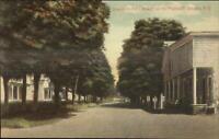 Plattekill Streams NY Ulster County c1910 Postcard