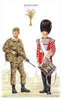 Postcard The British Army Series No.25 Welsh Guards by Geoff White