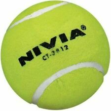 Nivia Yellow Heavy Cricket Hard Tennis Balls (Pack of 6)
