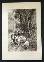 1887 Antique Peter Moran Etching Forest Capodimonte Cows Goats Art Print Cortese