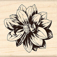 Flower Blossom Wood Mounted Rubber Stamp Brenda Walton by Inkadinkado NEW