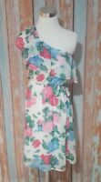 Everly Anthropologie Medium One Shoulder Ruffle Dress Elastic Waist Floral Lined