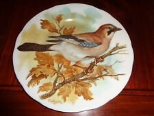 M G China Collectors Plate THE JAY