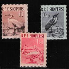 Birds Dalmatian Pelican 3 mnh stamps 1961 Albania 592-4 Little Egret Gray Heron