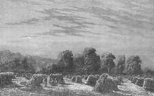 LANDSCAPES. A Corn-Field. Evening, antique print, 1851