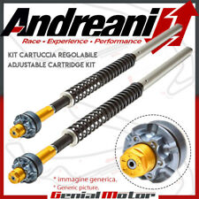 Kit Cartucho Hidraulico Misano No Ajust Andreani Ducati Monster 600 2000 00