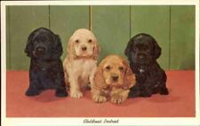 (msg) Postcard: Dogs, Children's Portrait