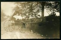 RPPC YOUNG WOMEN in HORSE DRAWN BUGGY ANTIQUE REAL PHOTO POSTCARD c 1910
