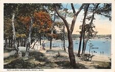 ONSET MASSACHUSETTS PATH ALONG THE BLUFFS~BEACH ON BAY~DICKERMAN POSTCARD 1917