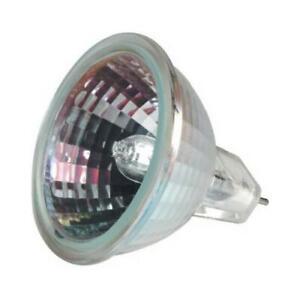 G E Lighting 20-Watt Quartz Halogen Indoor Flood Light Bulb