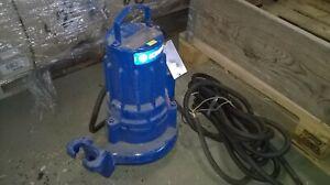 Lowara 1310.181 Submersible Pump