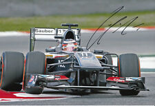 Nico Hulkenberg Hand Signed 2013 Sauber F1 Photo 12x8 1.