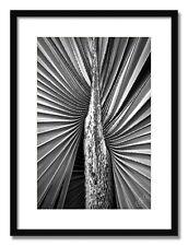 The Other Half - 17x21 Framed Art Print, Black or White Mat, Black Wood Frame