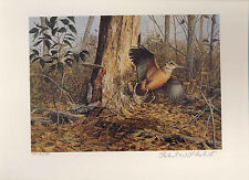 NORTH CAROLINA  #1996 STATE SPORTSMAN STAMP PRINT  A.P. by Richard Plasschaert